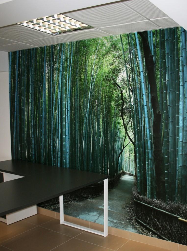 Pared con vinilo foto arboles bambu