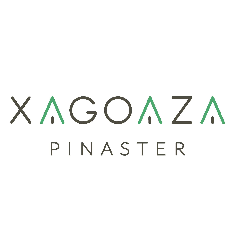 Logotipo principal Xagoaza Pinaster Logotipos pegadizos